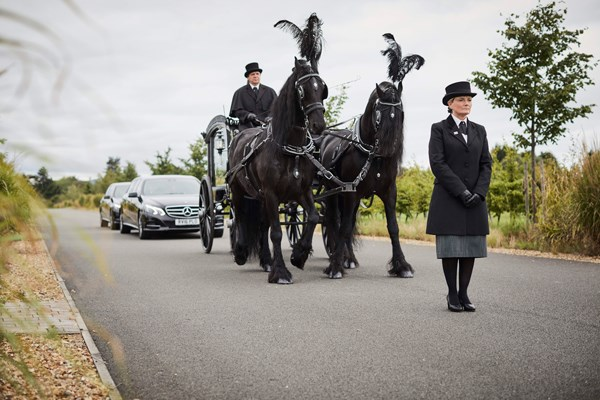 Horse drawn hearse Dignity Funerals alternative hearses