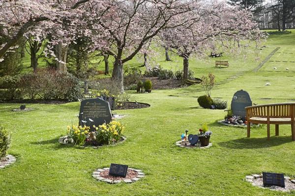 Memorial costs Dignity