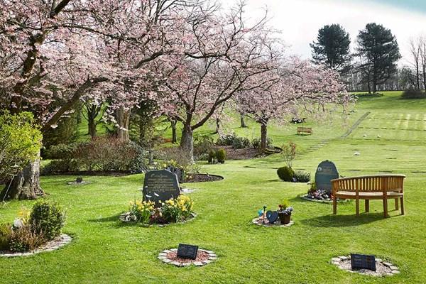 Garden memorial plaques Dignity Funerals