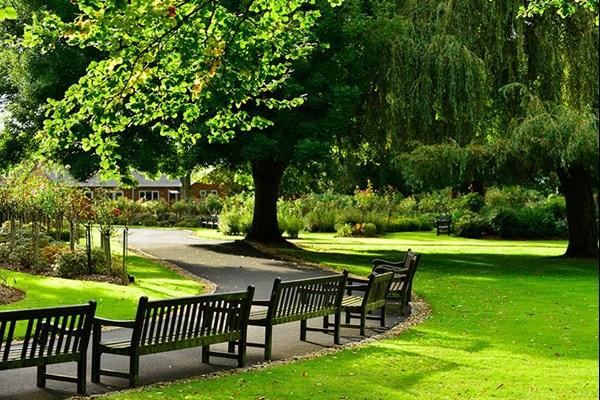 Oak memorial benches Dignity Funerals