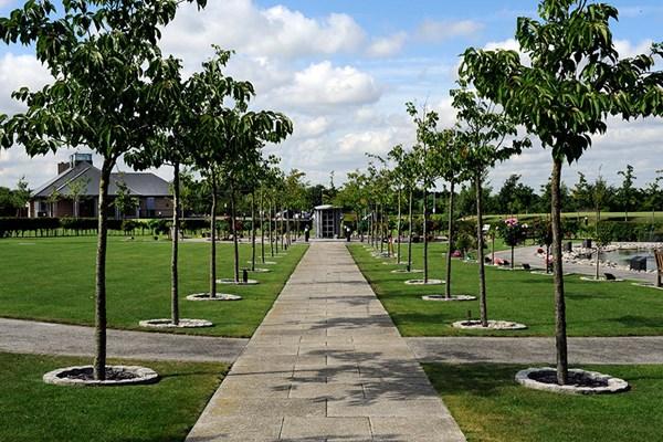 Memorial trees Dignity