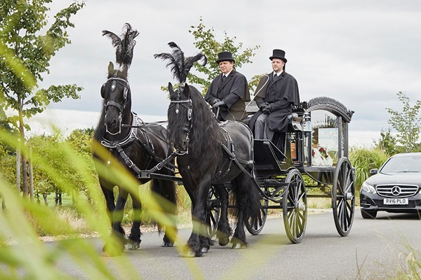 A horse-drawn hearse | Dignity Funerals